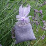 See-through Lilac Bag with Lilac Textured Band